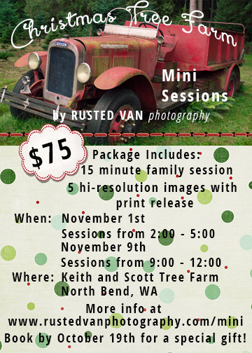 Tree Farm Mini Sessions 2