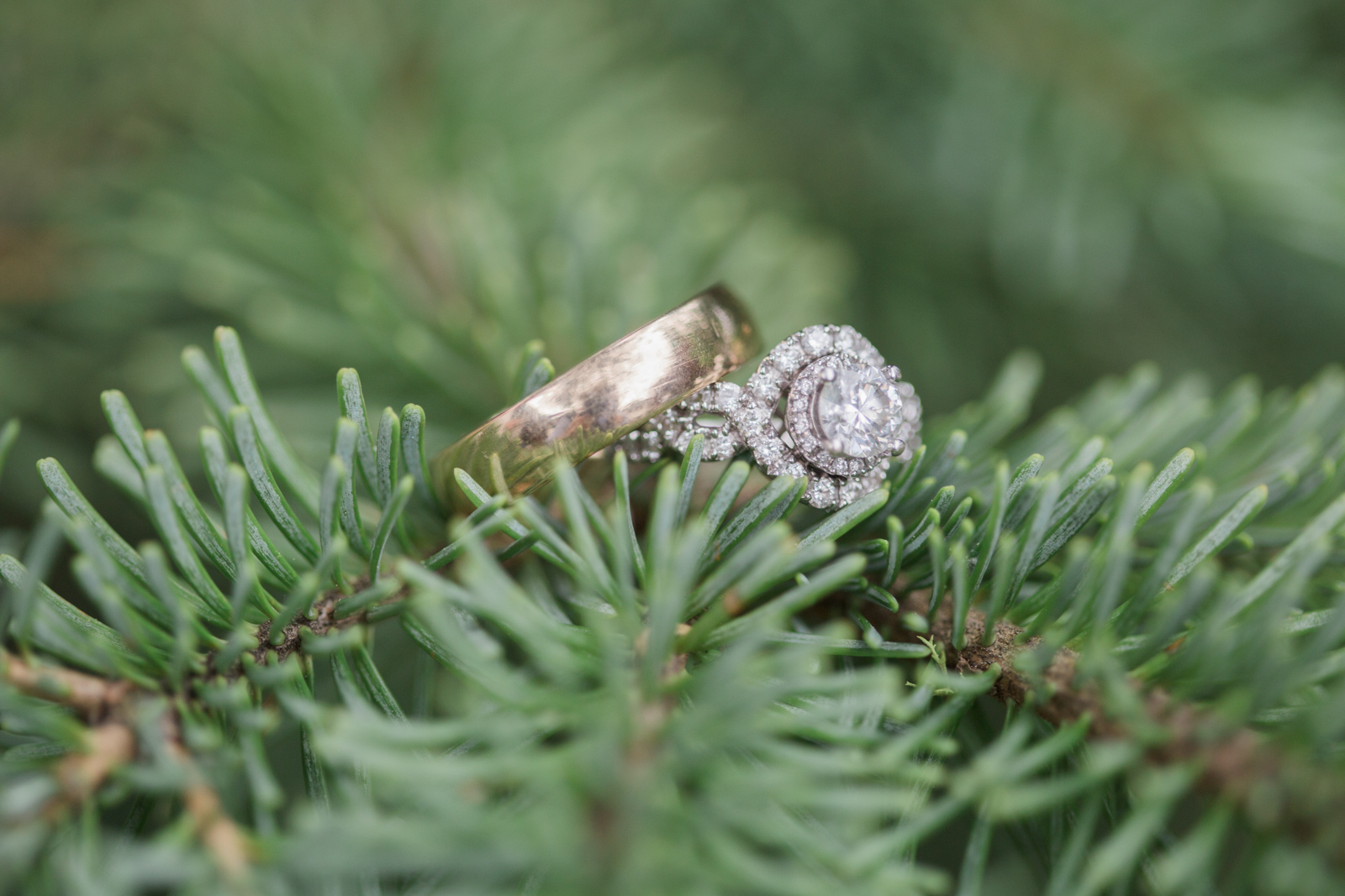 Wedding and Enagement Pricing Slider-10 PNW Ring Photography