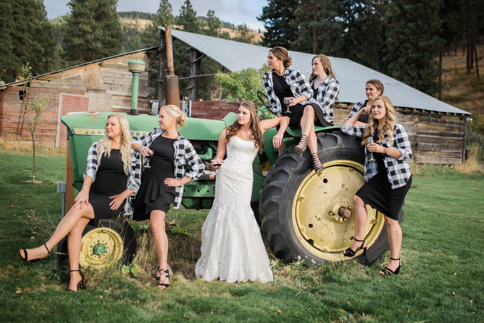 Wedding and Enagement Pricing Slider-28 Bridesmaids on a Tractor